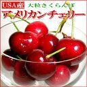 アメリカンチェリー 800g アメリカ産大粒 甘くボリュームある「USA サクランボ」贈物 ギフトフルーツ※品種はご指定いただけませんのでご注意ください