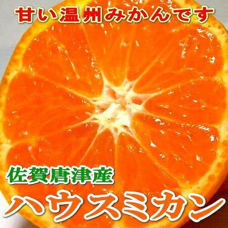 佐賀産 唐津 ハウスミカンSサイズ 小玉 約1kg 化粧箱オレンジ色も美しいハウスみかん 酸味が少なく甘い果汁のハウス蜜柑