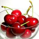 アメリカンチェリー 500g アメリカ産「USA サクランボ」贈物 初夏 ギフトフルーツ ※品種はご指定いただけませんので…
