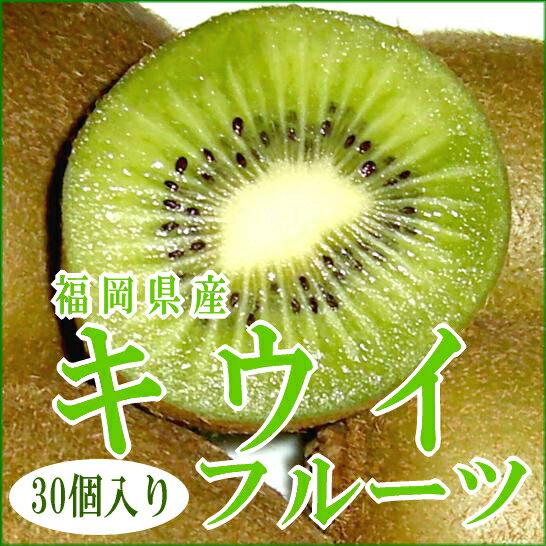 福岡産 キウイフルーツ (緑肉)「キラキラキウイ」3.6kg 中玉 30個入り (130g/1個)グリーンキウイ