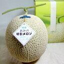 あみの琴引メロン(ことびきめろん)大玉 3Lサイズ2個入り「浜」京都産 糖度15度以上 京のブランド産品