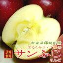 【送料無料】青森産 藤崎町 訳あり まるくみりんご園 のサンふじりんご 約5kg 18〜25個入り「減農薬・有機栽培」|アップル 林檎 リ…