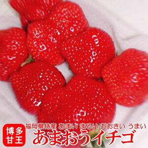 あまおういちご【福岡県 特産品/甘王】福岡産「博多あまおう」イチゴ やや訳あり5L大粒 2パック入り箱 (270g×2) G ご自宅用にどうぞ。赤く、大きく、とても濃い味の苺(いちご)です。 【