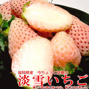 【白いちご】福岡産 博多 淡雪(あわゆき)イチゴ12〜15個前後入り×2パック入り箱 540g ※希少品のためお届け日はご指定いただけません?白いイチゴ ホワイト ストロベリー 希少フルー
