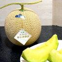 京都産 あみの琴引メロン(ことびきメロン)Lサイズ 2個入り「浜」●店長おすすめ果物です 黄金色のメロン とても甘い果汁♪ 丹後…