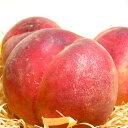 【お試し 送料無料】加納岩果樹園の桃(かのいわかじゅえんのもも)「訳あり」約1.2kg 5個入り 山梨産 ピーチ モ…