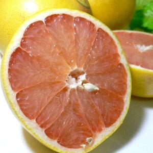 フロリダ 完熟グレープフルーツ 王冠(ゴールデンクラウン)赤肉 大玉 32個入り アメリカ産 糖度11度以上 【ラッキーシール対応】