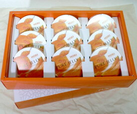 北海道 ホリ 夕張メロンピュアゼリー 9個入り化粧箱●ご贈答おすすめ商品です北海道の人気のスウィーツ 手土産