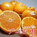 【お試し送料無料】佐賀産 デコ百恵(でこももえ)約1.5kg 6〜8個前後入り 吉森|不知火 シラヌヒ しらぬひ 送料込み 柑橘 オレンジ