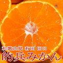 和歌山産 有田 田口 的兵みかん(まとひょうみかん) 小玉 Sサイズ 約5kg 56個前後入り |2ランク上の蜜柑 ※希少品のためお届けにお時…