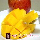 台湾産 マンゴー 大玉 6〜7個入り アップルマンゴー|フルーツギフト たいわんマンゴー お中元