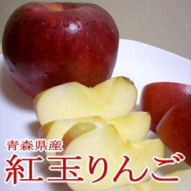 紅玉リンゴ(こうぎょくりんご)約10kg 小玉 46〜50個入り 青森 長野産|コウギョク べにたま 林檎 アップル パイ ジュース ジャム ケーキ