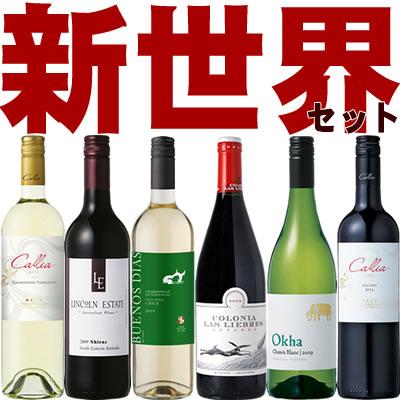 新世界6本セット アルゼンチン&南アフリカ&チリ&オーストラリア ワイン6本セット(赤3本 白3本)【送料無料S】【飲み比べS】【ミックスS】【セレクトS】【楽ギフ_のし宛書】【あす楽】【RCP】