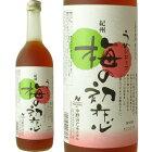 梅の初恋720mlうめシロップ(50%うめ果汁入り飲料)中野BC【和歌山県産】
