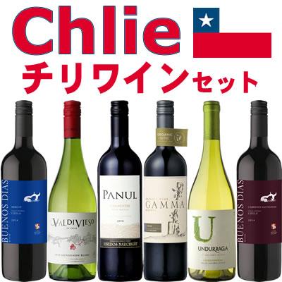 チリワイン 6本セット(赤ワイン ミディアムボディ4本+白ワイン 辛口2本)【送料無料S】【ミックスS】【飲み比べS】【セレクトS】【セット】【あす楽】【smtb-tk】【楽ギフ_のし宛書】【RCP】6つのブドウ品種が楽しめる!