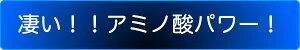 アルギニン5000スティックゼリー20g×2包入り【テクノサイエンス】プロ仕様しじみ約1万個分カフェインゼロ賞味期限2018.05を発送中