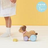 CandyPuppy−キャンディパピー−