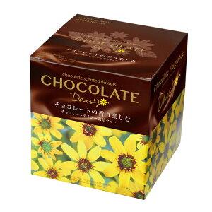 チョコレートデイジー栽培セット