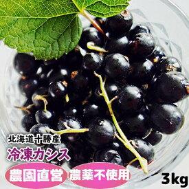 冷凍黒カシス(農薬不使用) 3Kg(250g×12) 2021年産 北海道十勝産