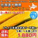 とうもろこし 送料無料糖度の高い「朝採り」を北海道十勝からクール便で即日直送!北海道十勝産 ゴールドラッシュ Lサ…