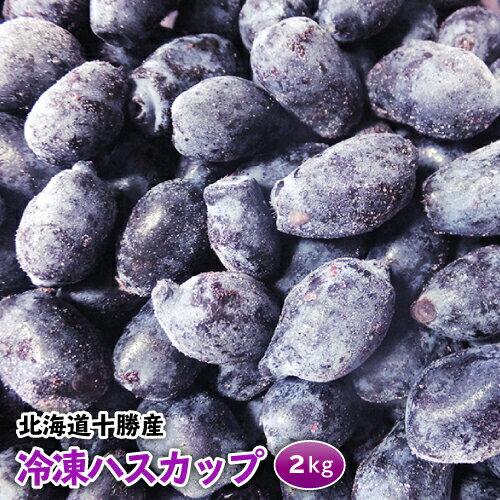 冷凍ハスカップ冷凍 2kg 高品質品 北海道十勝産 十勝ベリーファーム