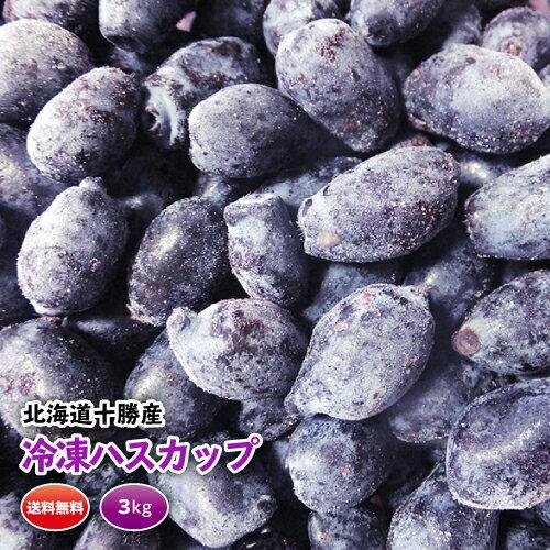 冷凍ハスカップ冷凍 3kg 高品質 北海道十勝産 十勝ベリーファーム