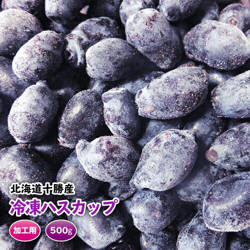 北海道十勝産・富良野産ハスカップ 冷凍 500g 加工用 H29年産