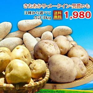じゃがいも 2019新じゃが 送料無料北海道十勝産 【Mサイズ】選べる2種・3kgセット(きたあかり・メークイン・男爵いも 各種1.5kgずつ)ジャガイモ ラッキーシール 対応