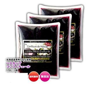ハスカップジャム 北海道 170g(平袋)×3袋 無添加 甜菜糖使用