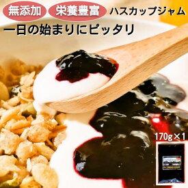 無添加ハスカップジャム 北海道 170g(平袋)×1袋 ヨーグルトソース 1000円ポッキリ