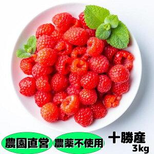 冷凍ラズベリー(農薬不使用)3kg(250g×12) 北海道十勝産
