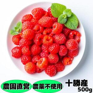 冷凍ラズベリー(農薬不使用) 500g(250g×2) 北海道十勝産