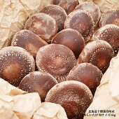 北海道十勝新得町産原木しいたけ【特選Mサイズ1kg】無農薬/椎茸