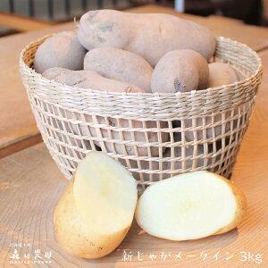【新じゃが メークイン】北海道十勝[森田農園]産3kg/じゃがいも/送料無料/2020年収穫