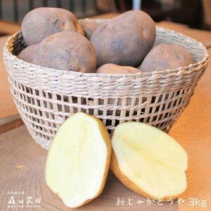【新じゃが とうや】北海道十勝[森田農園]産3kg/じゃがいも/送料無料/2020年収穫