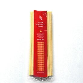 ゆめちからパスタフェットチーネ【200g】北海道産/小麦/ゆめちから100%/モチモチ/平麺タイプ/Pasta