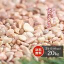 【送料無料】さくら 2分 20kg   砂利 玉砂利 庭 ピンク ガーデニング 石 玉石 小粒 敷き砂利 桜色 約5-10mm 桃色 販売…