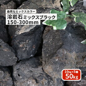 【送料無料】溶岩石 ミックスブラック 150-300mm 50kg (10kg以上×5箱)