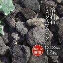 【送料無料】溶岩石 ミックスブラック 50-100mm 12kg以上 | ロックガーデン 庭石 庭 石 販売 ガーデニング 園芸 庭園 …