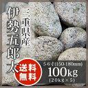 庭石 ゴロタ石:伊勢五郎太 5−6寸 三重県産100kg(20kg×5袋)【送料無料】