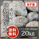 庭石 ゴロタ石:伊勢五郎太 5−6寸 三重県産20kg【送料無料】【あす楽】