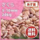 玉砂利:さくら 20kg玉砂利 桃色 庭 敷き砂利 庭石 ガーデニング【送料無料】【あす楽】