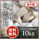 玉砂利:白玉砂利 5分(13-20mm)10kg【送料無料】【あす楽】