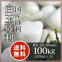 玉砂利:白玉砂利 8分(21-35mm)100kg(20kg×5袋)【送料無料】