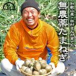 無農薬玉ねぎ【和歌山県産】