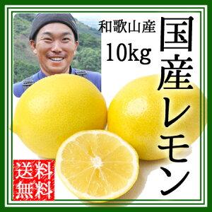 レモン 国産 無農薬 送料無料 10kg 黄色レモン ノーワックス 農園直送 和歌山産 有機栽培 産地直送 オーガニック グリーンジャンクション