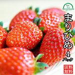イチゴいちごまりひめ和歌山
