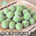梅 青梅 南高梅 無農薬 3kg 送料無料 梅酒 梅干し 梅酢 梅シロップ 酵素ジュース に最適 自然栽培、無農薬農法 無肥料…