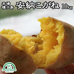 安納芋 10kg 種子島 送料無料 サツマイモ 安納こがね S M 幻の芋 安納黄金 減農薬 低農薬 蜜芋 鹿児島 日高農園