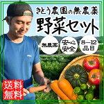 無農薬有機野菜セット